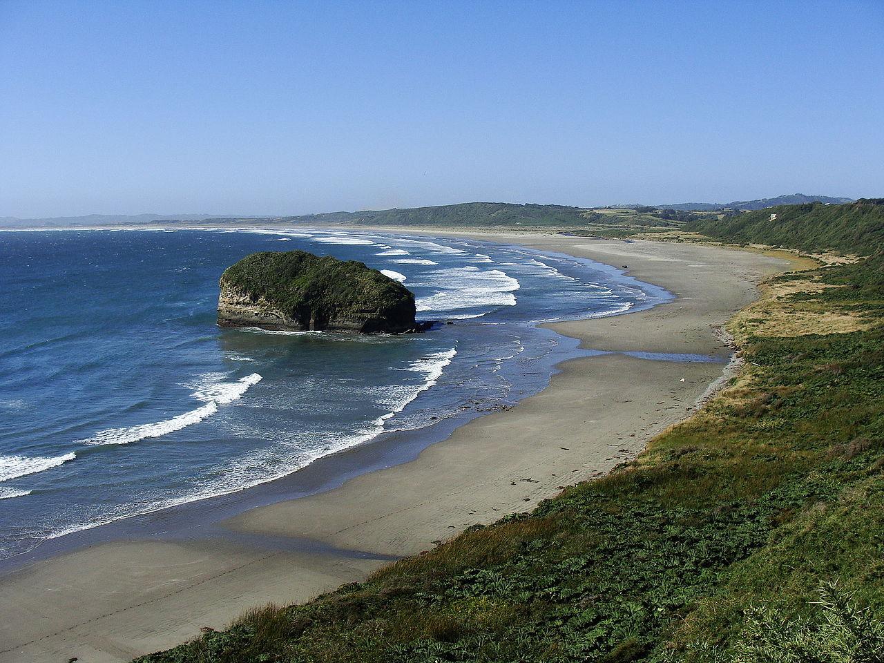 Автор фото - carlos.navarro from Concepción, Chile. Лицензия CC BY-SA 2.0, фото с сайта Wikimedia.