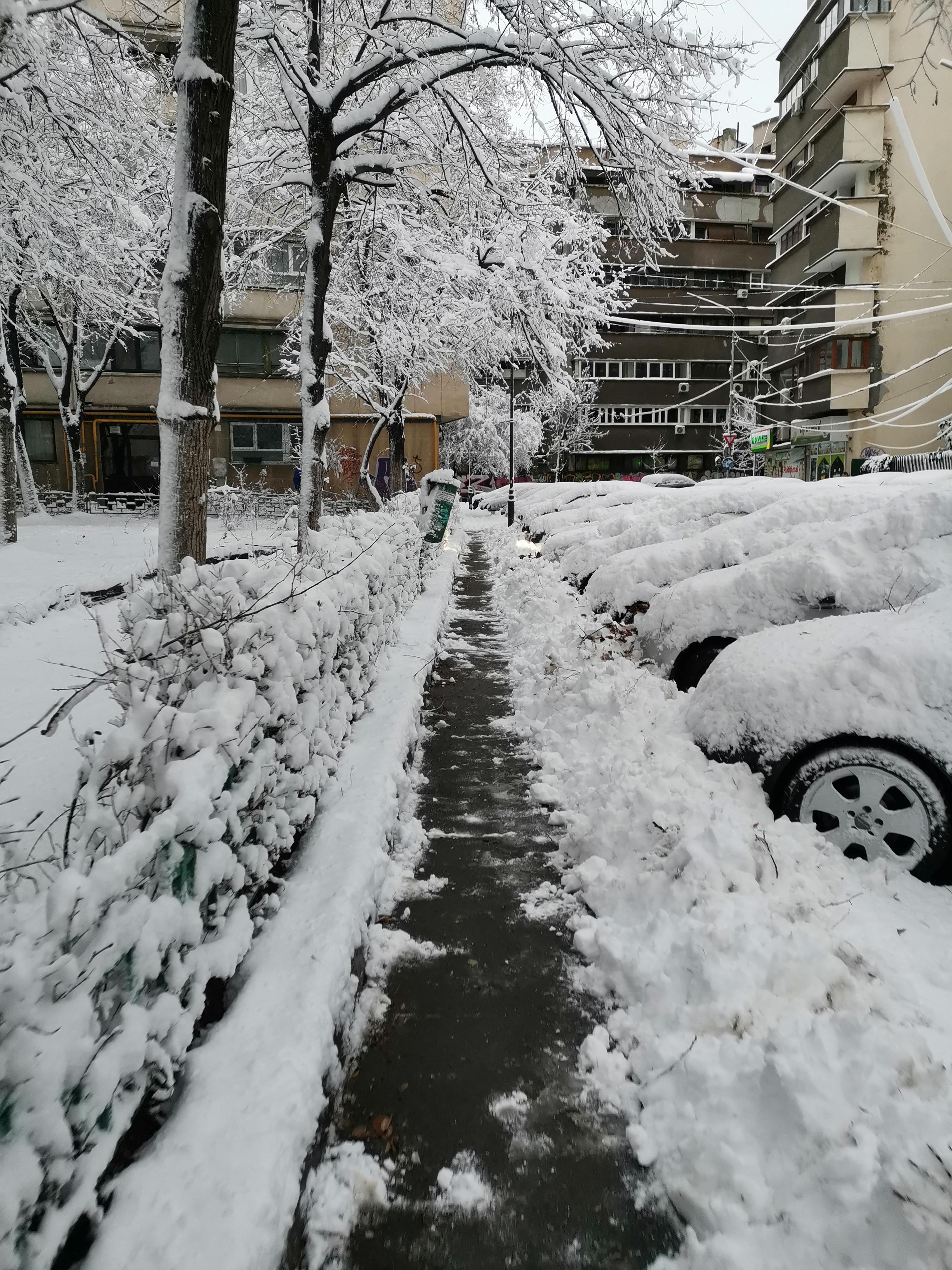 Зима в Бухаресте 2019. Автор Туре Анастасия